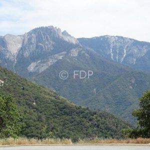 Sequoia-Nat-Park-view