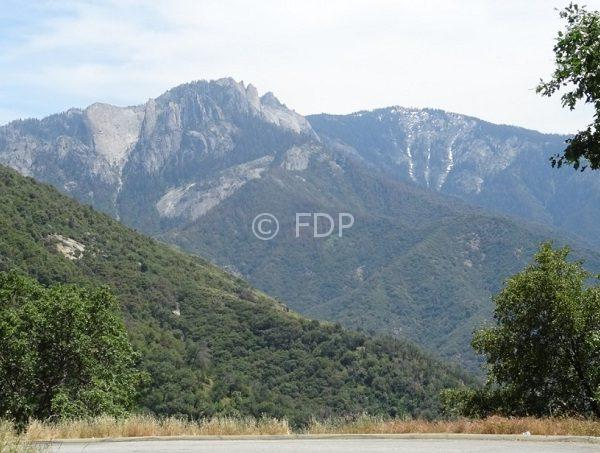 Sequoia-Nat-Park-view