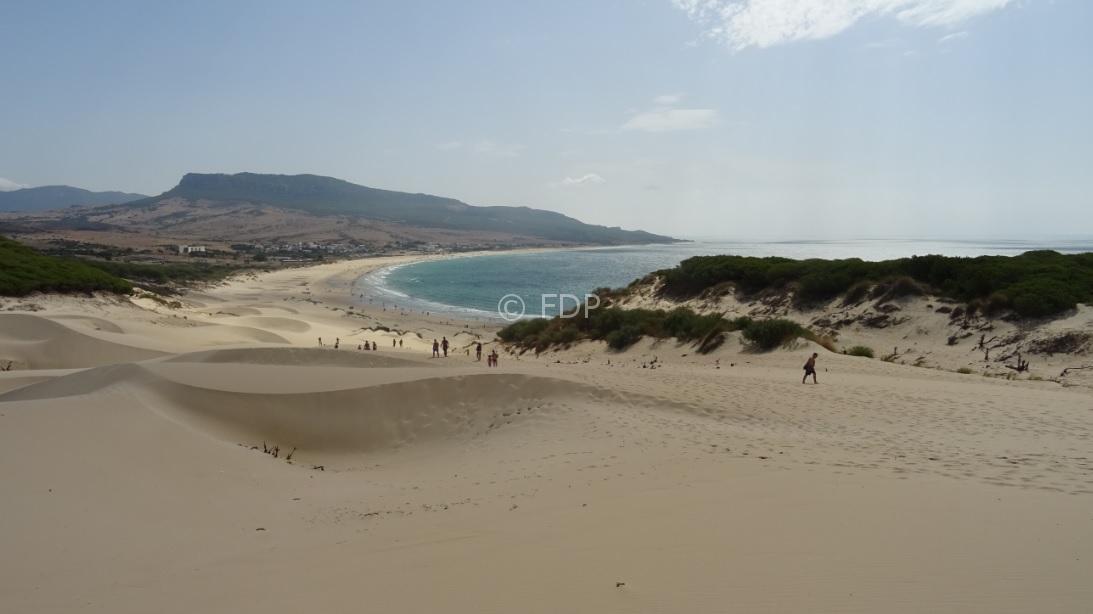 Playa de Bolonia 2