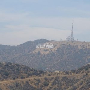 cartelhollywood-griffith-peq