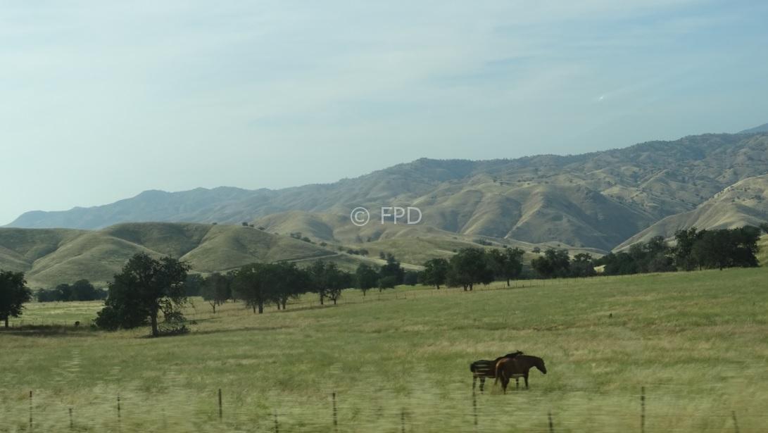 ruta66-ranchocalifornia-peq