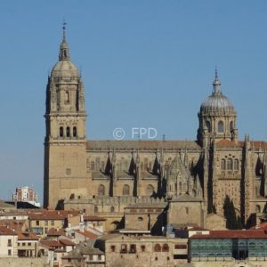 Salamanca-catedral-universidad-peq